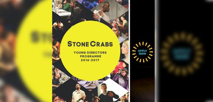 Theatre Young Directors opportunities ahoy!