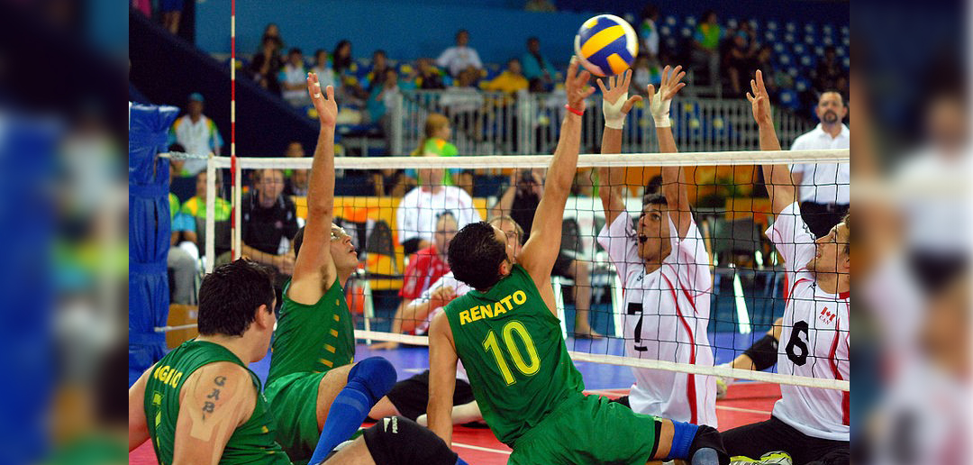 rules of sitting down volleyball Training for coaches training for coaches is made available through usa volleyball or local paralympic sport programs on sitting volleyball this training will.