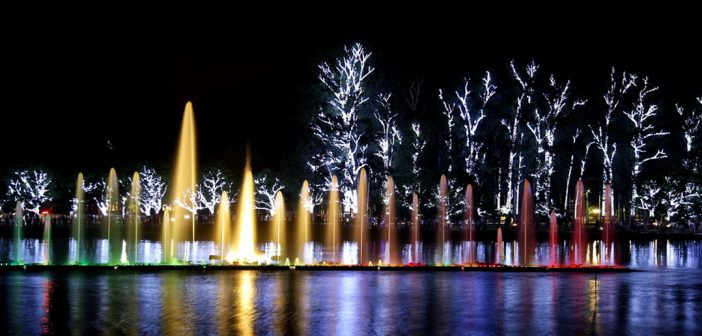 Christmas tree attracts sightseers to São Paulo's biggest park