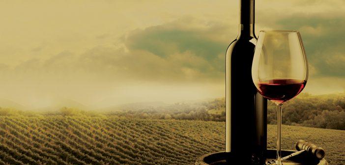 wines of altitude | vonhas de altitude