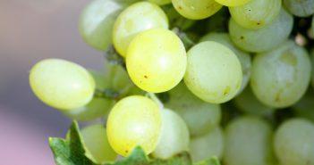 Caipirinha de Uva Verde com Pimenta Rosa